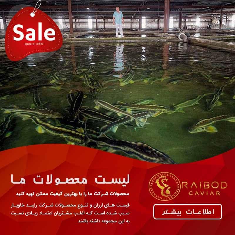 پرورش ماهی خاویار در ایران و جهان