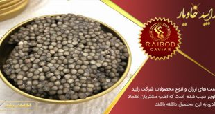 خرید خاویار ایرانی پرورشی اصل