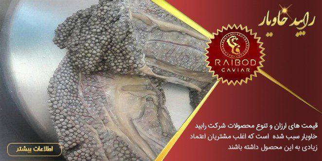 قیمت خاویار شیلات در تهران