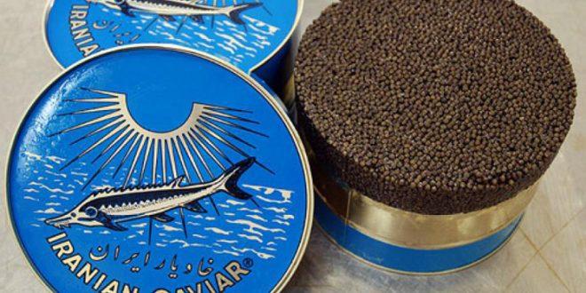 خاویار ایرانی Iranian Caviar
