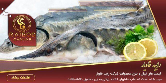 خرید کنسرو ماهی خاویار
