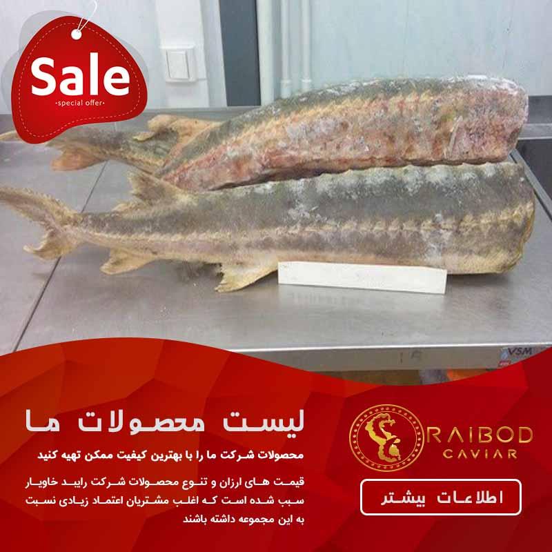 فروش گوشت ماهیان خاویاری