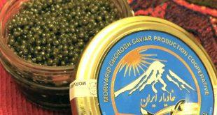 بازار خاویارهای ایرانی