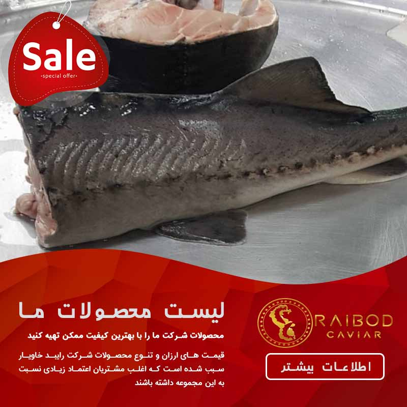 خرید فیله گوشت ماهی خاویار دریای خزر