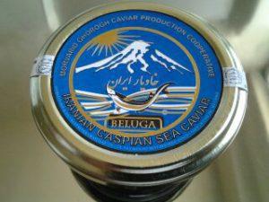 صادرات خاویار ایرانی beluga