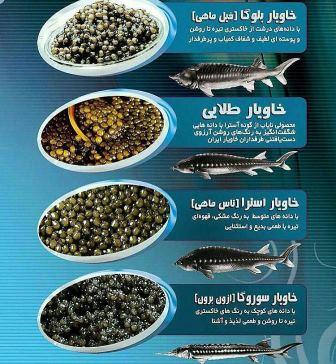 قیمت روز خاویار طلایی ایران