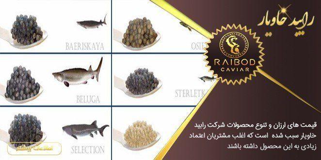 انواع مرغوب ترین ماهی های خاویاری