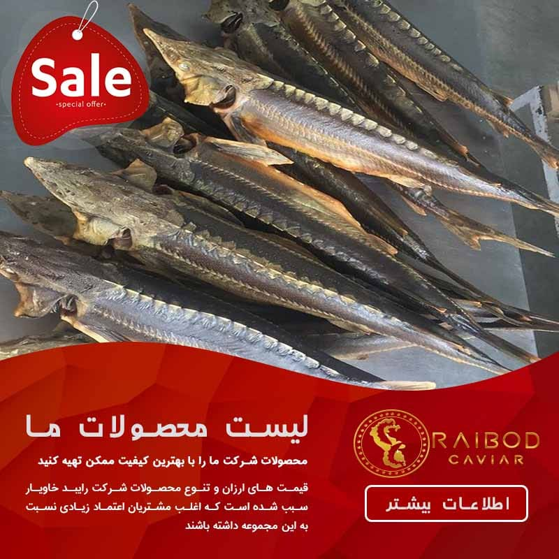 مشخصات ماهی اوزون برون