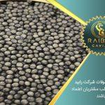 خاویار صادراتی ایران