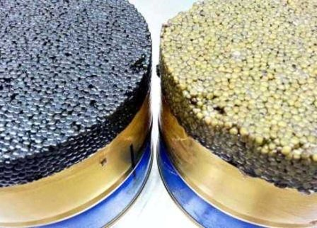 فروش خاویار درجه یک ایرانی و صادراتی