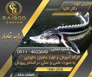 کارگاه پرورش ماهیان خاویاری - رایبد خاویار