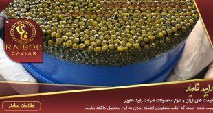 فروش اوزون برون تهران