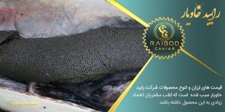 تولید خاویار پرورشی در ایران