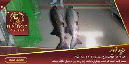 ماهی خاویار گلستان