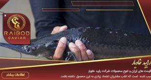 ماهی خاویار خزر