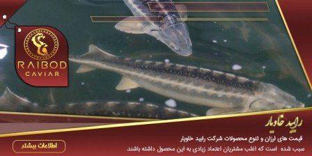 ماهی خاویار در یزد