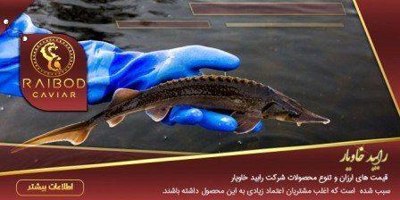 ماهی خاویار کوچک