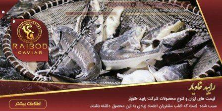 پرورش انواع ماهی خاویار