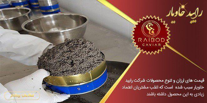 تولید خاویار بلوگا در شمال ایران