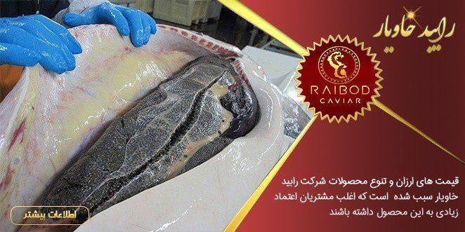 بهترین خاویار ایران از کدام ماهی است؟